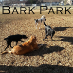 Mt Juliet Bark Park (Jones Family Park)