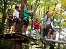Treetop Adventure Park Adult_Course
