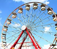 Wilson County Fair 2015