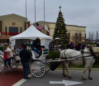 Things To Do for December 15 – 21, 2015