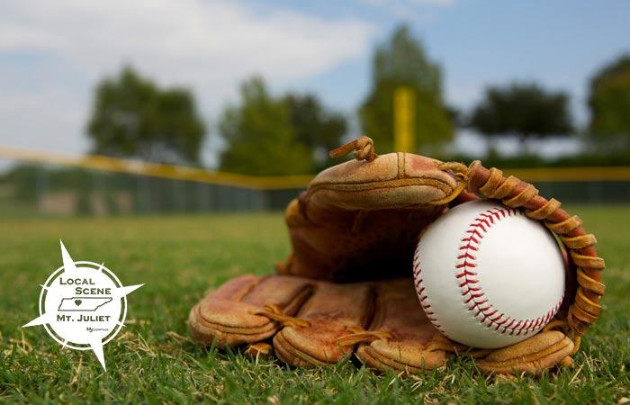 Local-Scene-Baseball